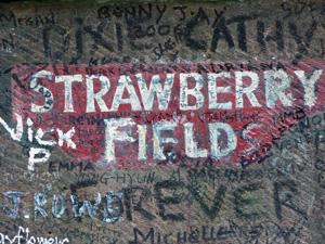 strawberryfield.jpg